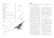 DrawingBird_P001_047.indd